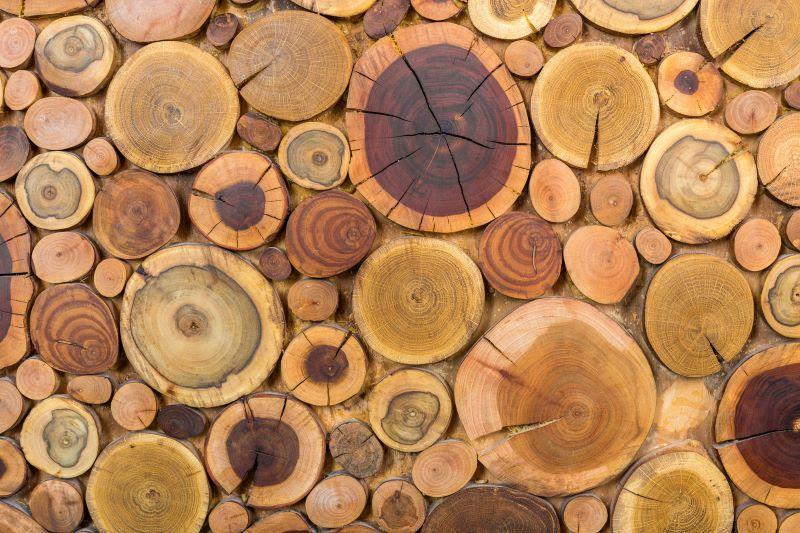 Tűzifa fajták és a legfontosabb információk a fatüzelésről